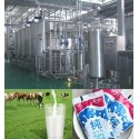 Production de lait 500 L/ H